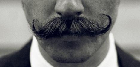 bigotitos