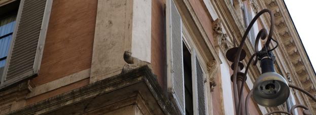 La 'gatta' de la 'Piazza Grazioli', Roma. /Tamara Velázquez - www.conlaplumaenbandeja.com